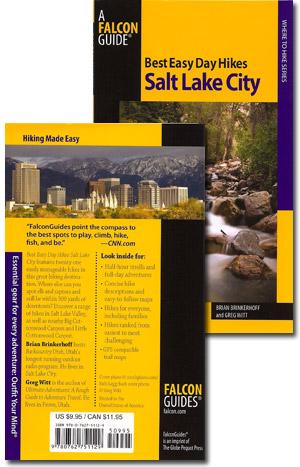 Salt Lake City Skyline Stock Image